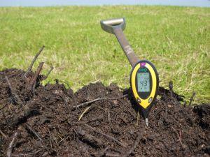 Nach mehr als drei Wochen ist unser Kompost immernoch auf 43°C