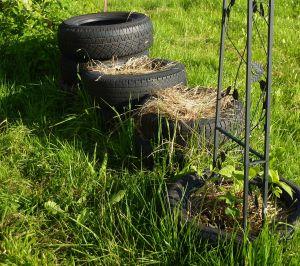 Der Kartoffelturm: Verbindung aus Recycling, Winschutz, Wärmespeicher und Entlastung des Rückens